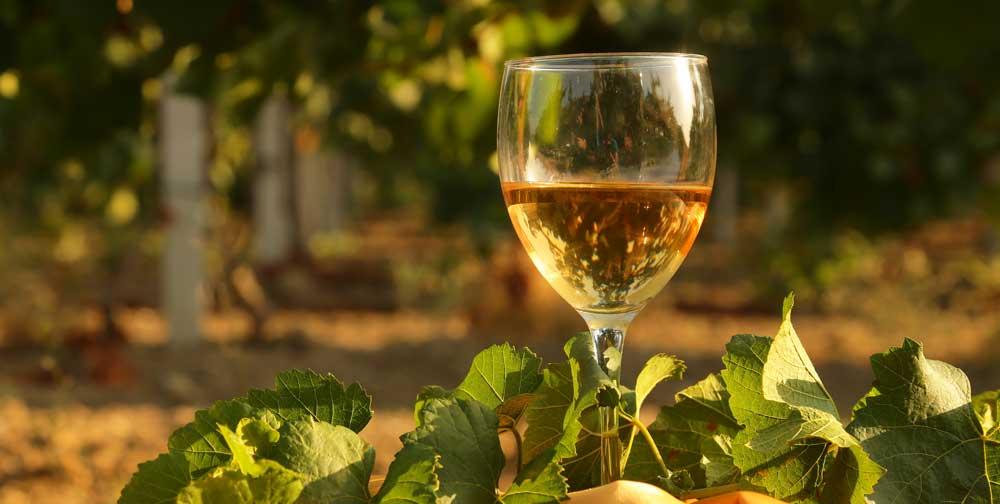 mitos vino blanco, vino blanco