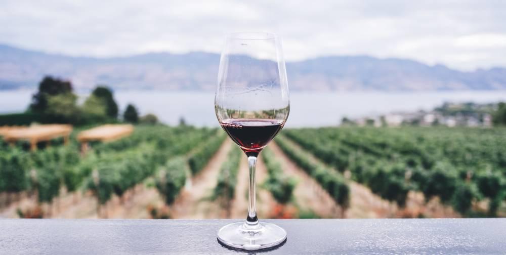 vino crianza, vino reserva, vino joven, vino gran reserva, vino